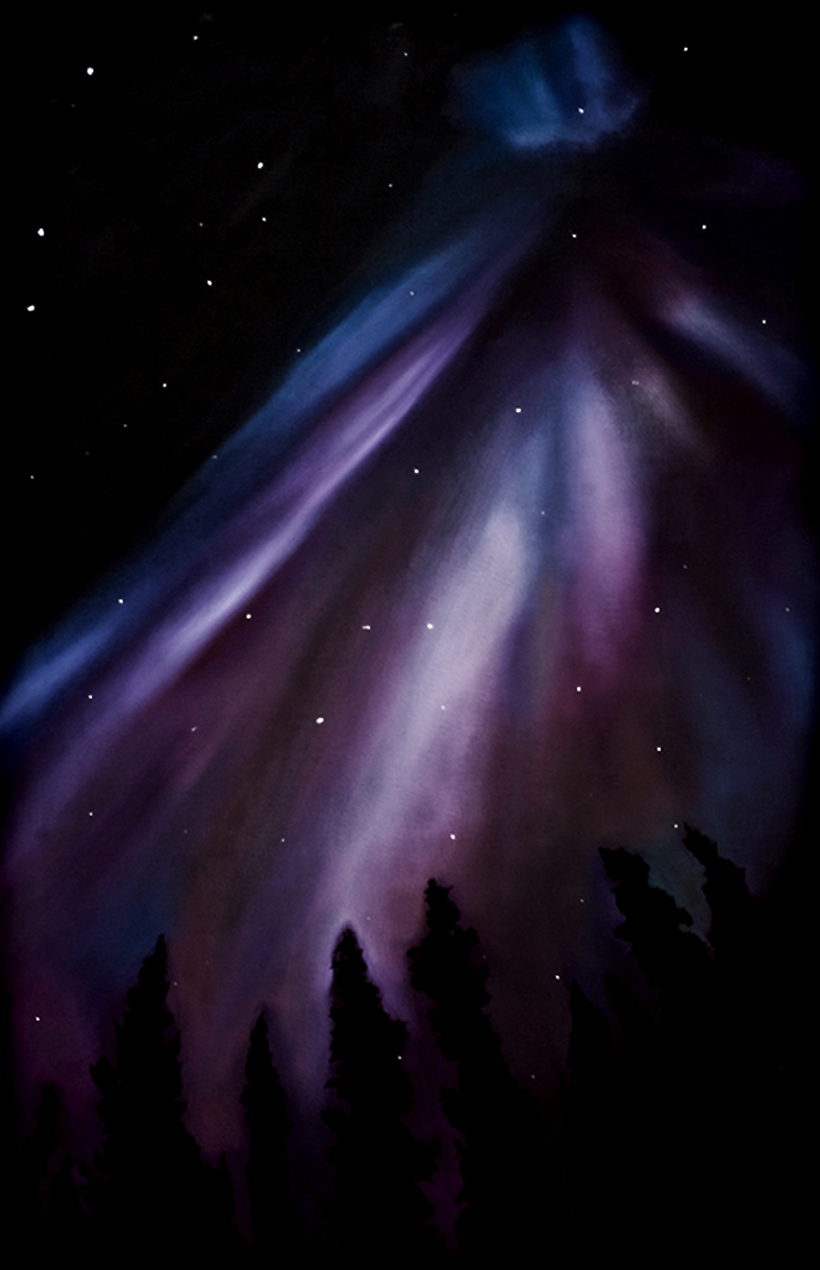 The Northern Light 1